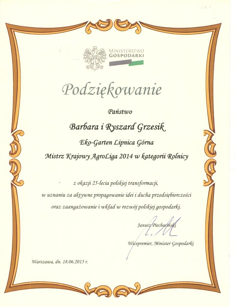 skan dyplomu (10)