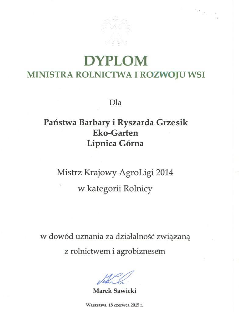 skan dyplomy (1)