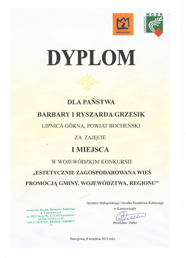 skan dyplomy (7)